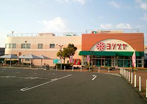 yatomi